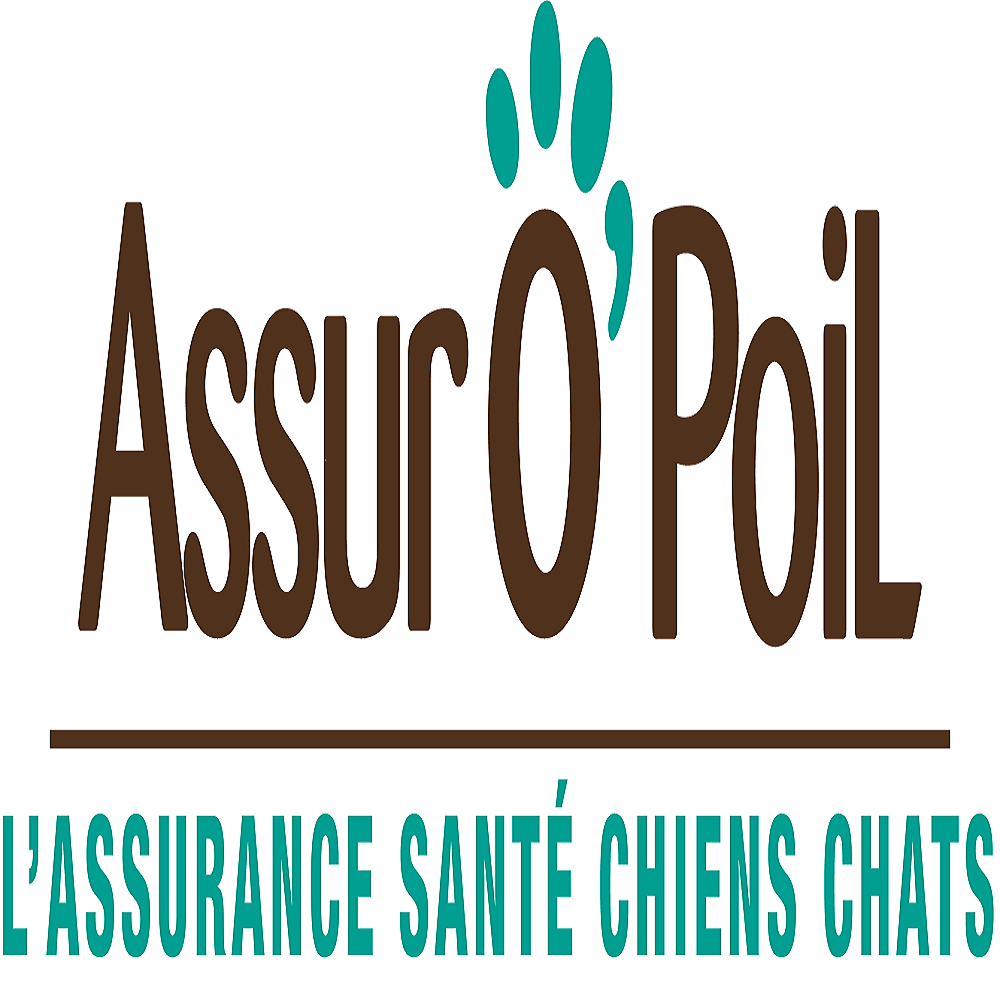Assuropoil.be