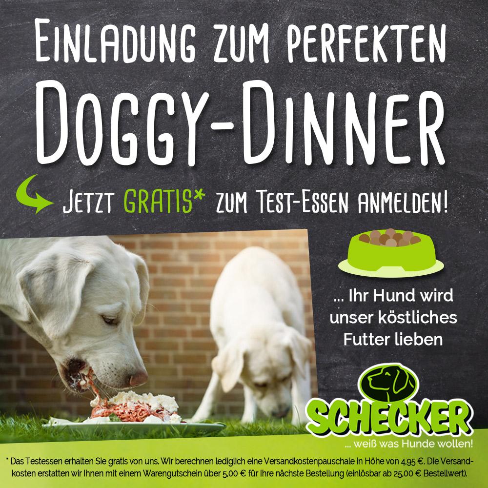 Doggy-dinner.de