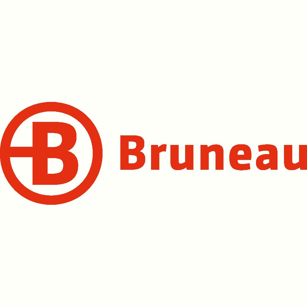 Bruneau.es