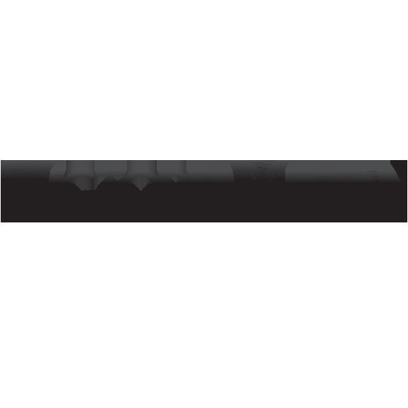 VictoriaMilan.nl is een Noorse dating organisatie die gespecialiseerd is op het gebied van vreemdgaan dating