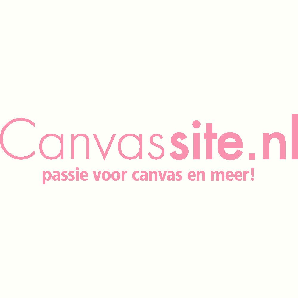 Klik hier voor de korting bij Canvassite.nl