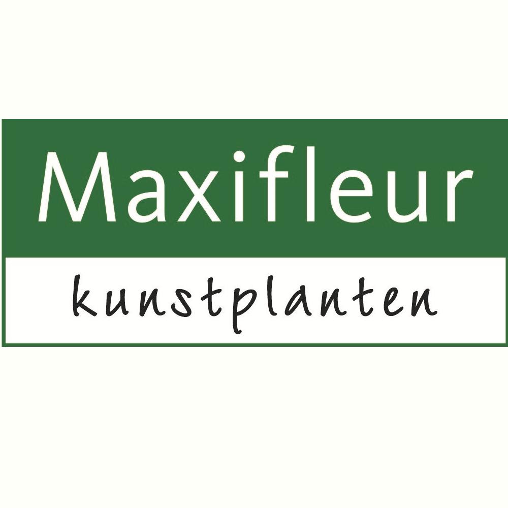 Maxifleur-kunstplanten.nl