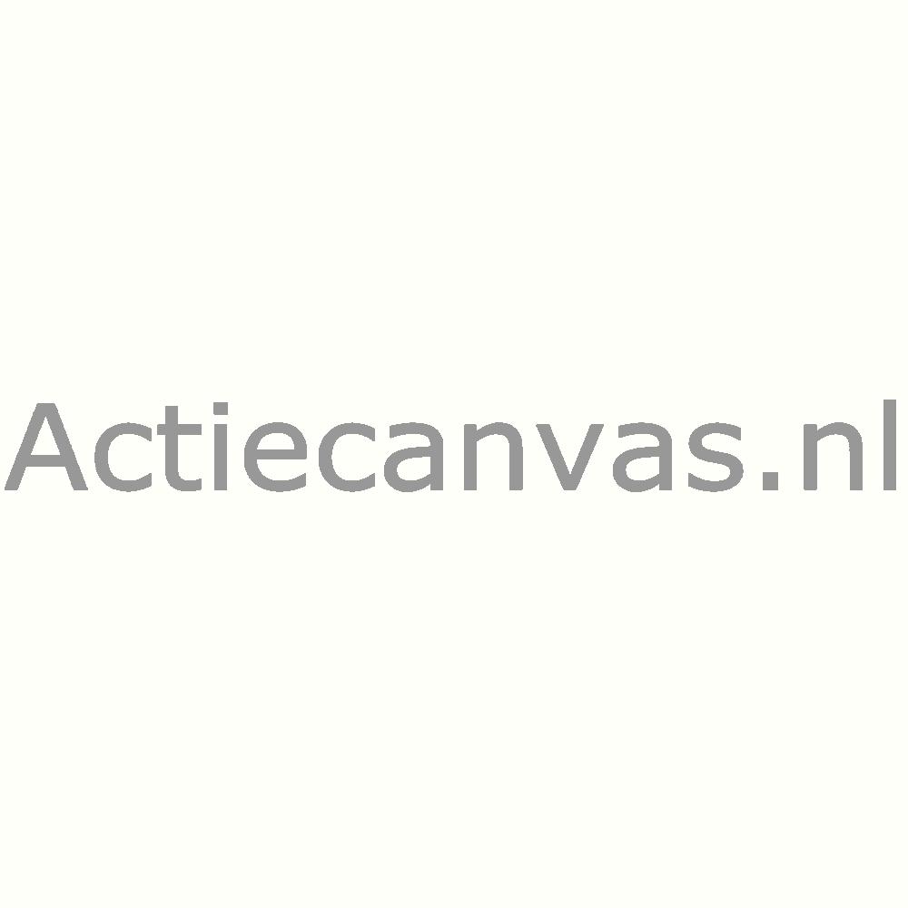 Actiecanvas.nl