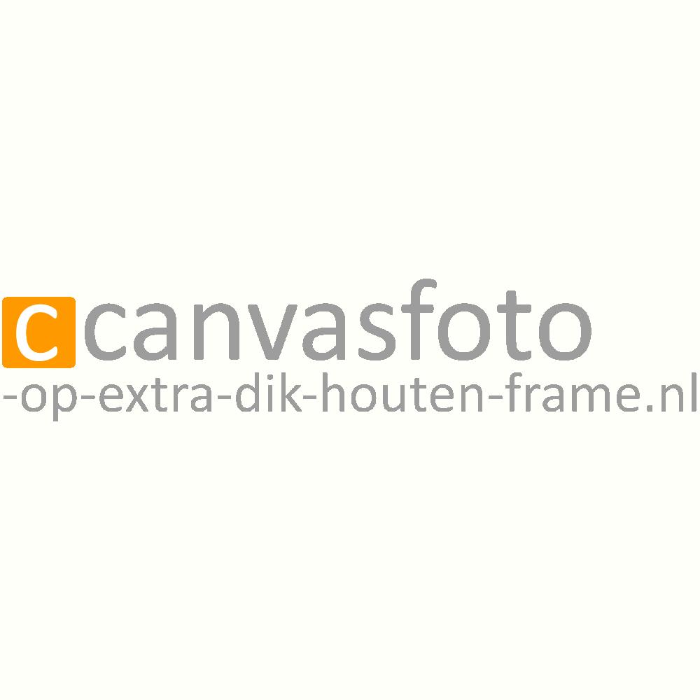 Canvasfoto-op-extra-dik-houten-frame.nl