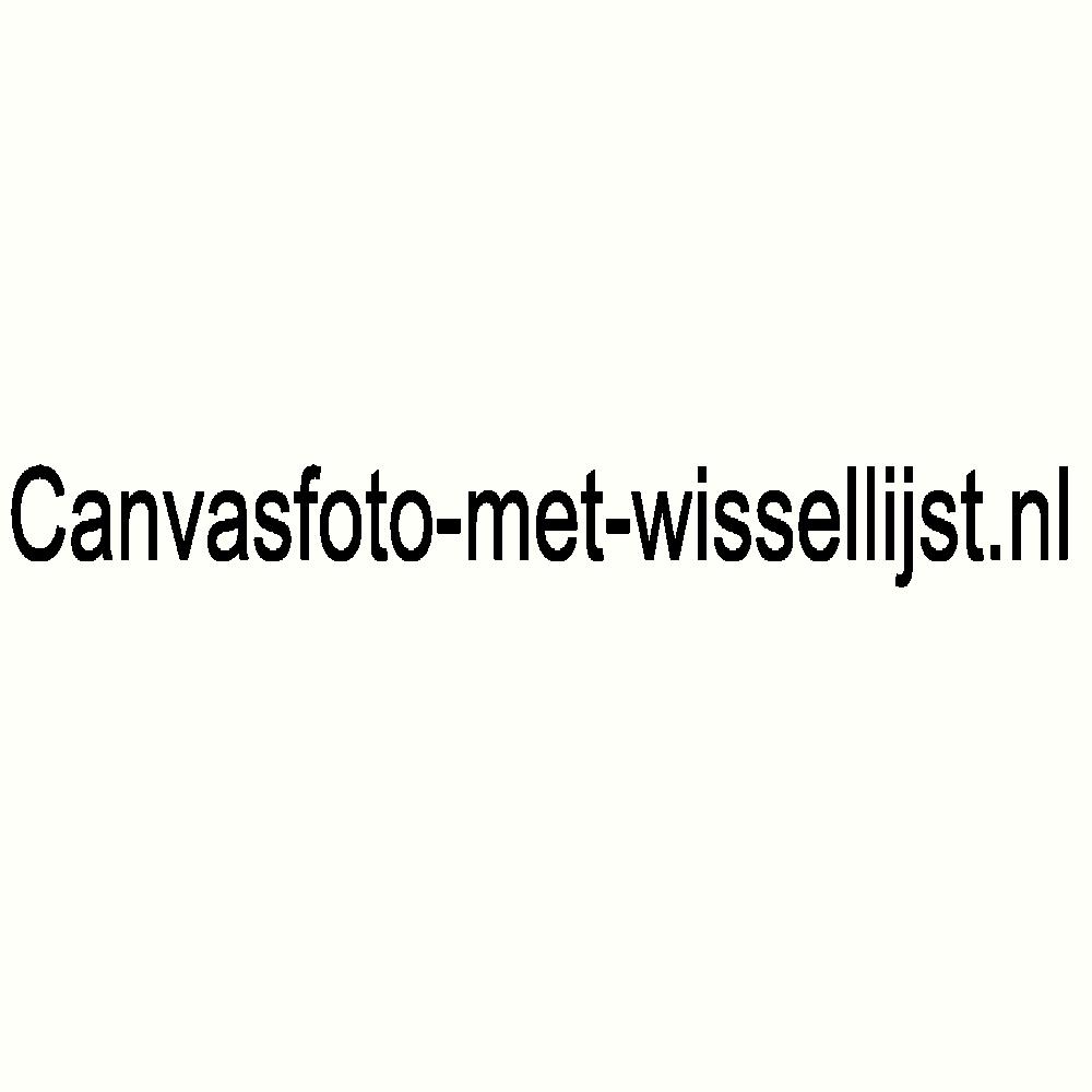 Klik hier voor de korting bij Canvasfoto-met-wissellijst