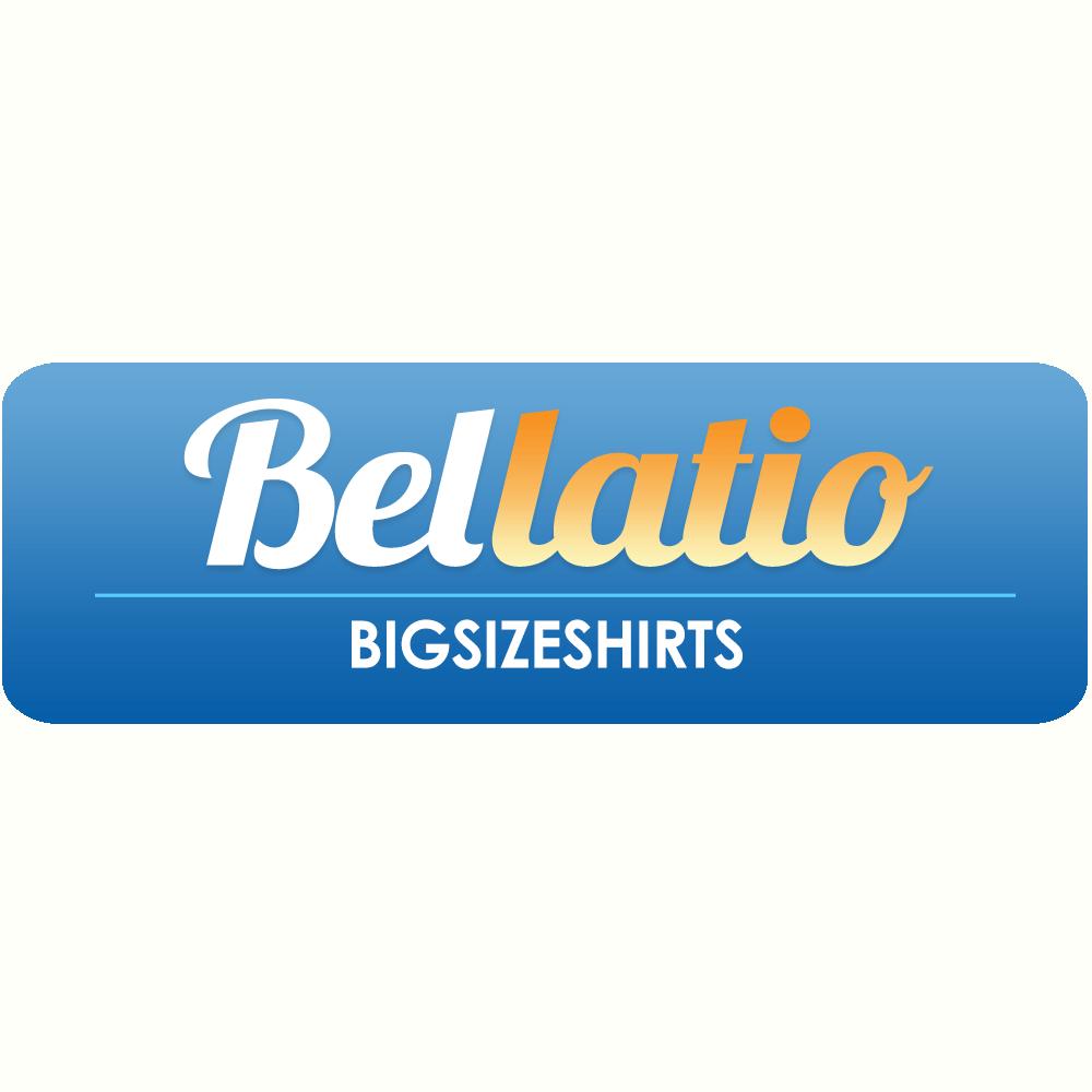 Klik hier voor de korting bij Bigsizeshirts.com